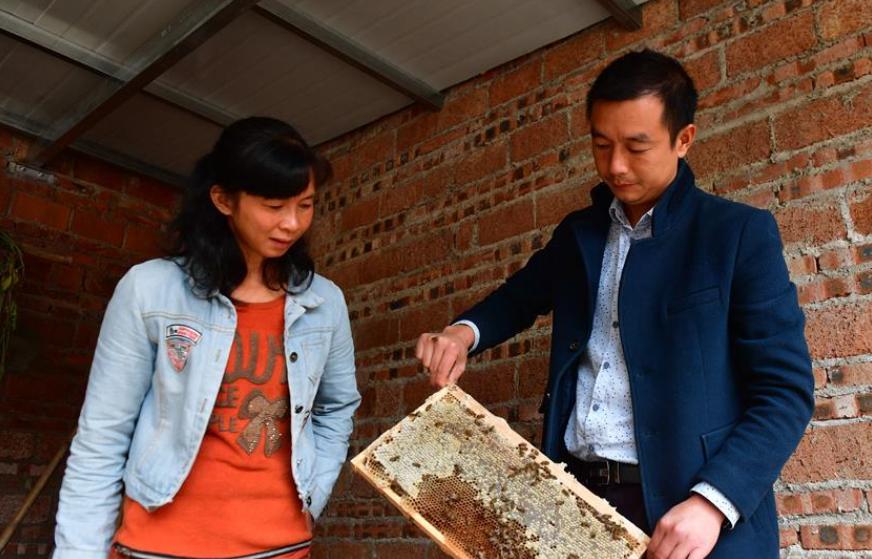 养蜂撑起脱贫致富的希望
