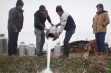 中国多地出现奶农倒奶杀牛事件