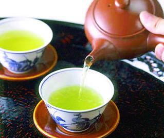 日照绿茶泡茶的基本步骤