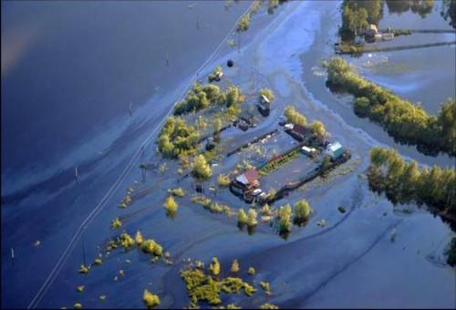 俄罗斯石油泄漏 世界第七大河遭污染