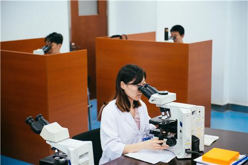 医务人员在江苏康复医疗集团病理中心进行病理分析.图/刘金海
