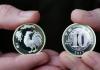 兑换鸡年纪念币排长队 2月18日二次预约发行