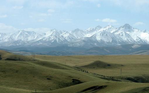 绿色的呼唤——探访祁连山生态的最新报告